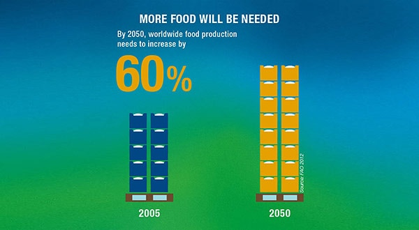Feeding growing population: more food will be needed worldwide